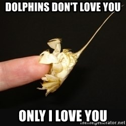 Fighty crab - DOLPHINS DON'T LOVE YOU ONLY I LOVE YOU