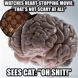 """Scumbag Brain - Watches heart-stopping movie: """"That's not scary at all"""" sees cat: """"OH SHIT!"""""""