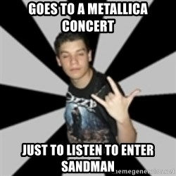 metal poser - goes to a metallica concert just to listen to enter sandman