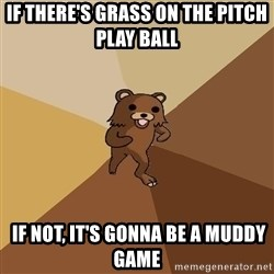Pedo Bear From Beyond - if there's grass on the pitch play ball  IF NOT, IT'S GONNA BE A MUDDY GAME