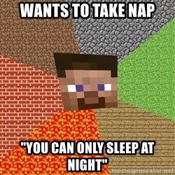 "Minecraft Guy - wants to take nap ""you can only sleep at night"""