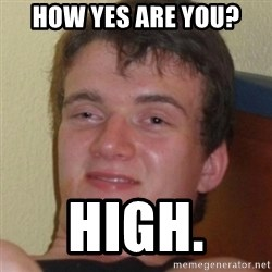 Stoner Guy - How yes are you? high.