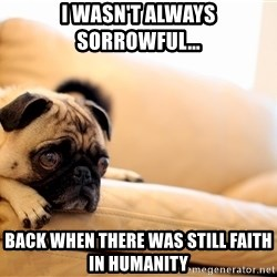 Sorrowful Pug - I wasn't always sorrowful... back when there was still faith in humanity