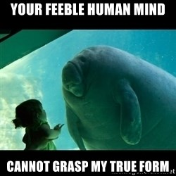 Overlord Manatee - your feeble human mind cannot grasp my true form