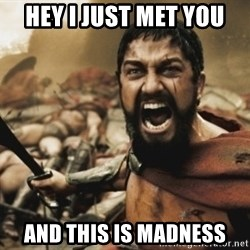 leonidas - HEY I JUST MET YOU  And this is madness