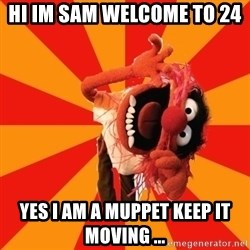 Animal Muppet - hi im sam welcome to 24  yes i am a muppet keep it moving ...