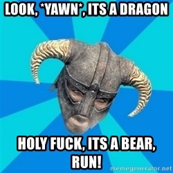 skyrim stan - look, *yawn*, its a dragon holy fuck, its a bear, run!