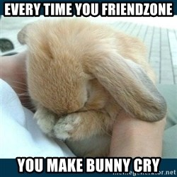Bunny cry - Every time you friendzone you make bunny cry
