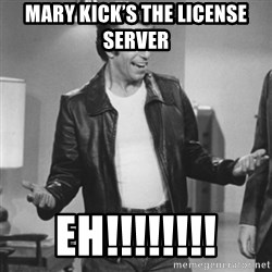 The Fonz - mary kick's the license server  EH!!!!!!!!