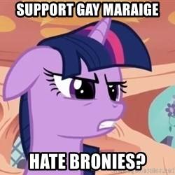 My Little Pony - SUPPORT GAY MARAIGE HATE BRONIES?