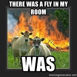 Evil Cow  - there was a fly in my room was