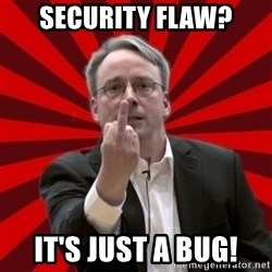 Angry Linus - Security FLAW? It's just a bug!