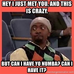 Can I have your number? - Hey I JUST MET YOU, and this is crazy.  But can I have yo numba? Can I have it?