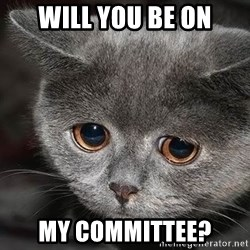 Sadcat - Will you be on my committee?
