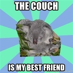 Clinically Depressed Koala - The couch is my best friend