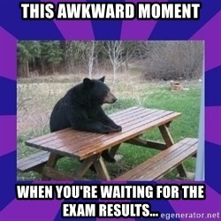 waiting bear - THIS awkward MOMENT WHEN YOU'RE WAITING FOR THE EXAM RESULTS...