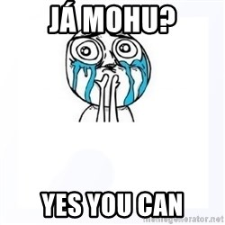YES YOU CAN - Já mohu? Yes you can