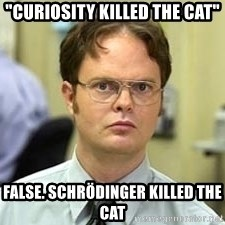 "Dwight Shrute - ""CURIOSITY killed the cat"" False. Schrödinger killed the cat"