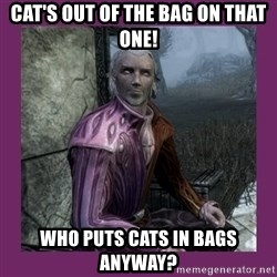 Sheogorath - Cat's out of the bag on that one! Who puts cats in bags anyway?