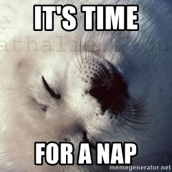 Happy Harp Seal - It's time  For a nap