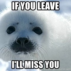 Happy Harp Seal - If You leave I'll miss you