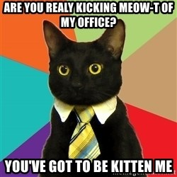 Business Cat - Are you realy kicking meow-t of my office?  You've got to be kitten me