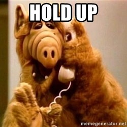 Inappropriate Alf - hold up