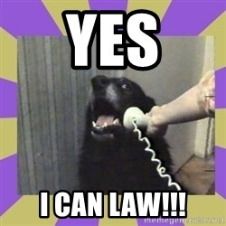 Yes, this is dog! - YES I CAN LAW!!!