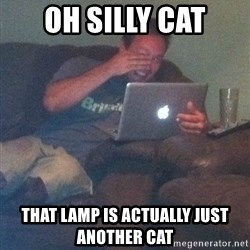 Meme Dad - oh silly cat that lamp is actually just another cat