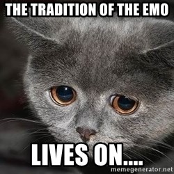 Sadcat - the tradition of the emo lives on....