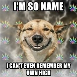 Stoner Dog - i'm so name  i can't even remember my own high