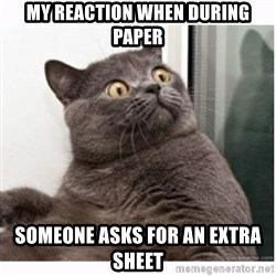 Conspiracy cat - My reaction when during paper someone asks for an extra sheet