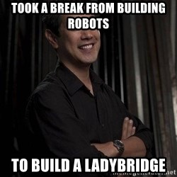 Most Interesting Geek In The World - Took a break from building robots to build a ladybridge