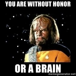 Worf - you are without honor or a brain