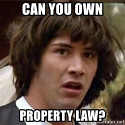 Conspiracy Keanu - can you own property law?