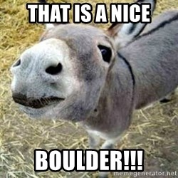 Assumptions Donkey - that is a nice boulder!!!