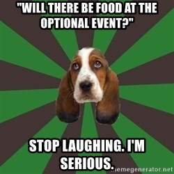 """Broke College Student Basset - """"Will there be food at the optional event?"""" stop laughing. I'm serious."""