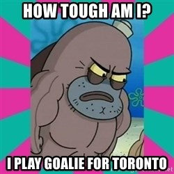 How tough am ii? - HOW TOUGH AM I? I PLAY GOALIE FOR TORONTO