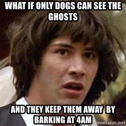 Conspiracy Keanu - what if only dogs can see the ghosts and they keep them away  by barking at 4am