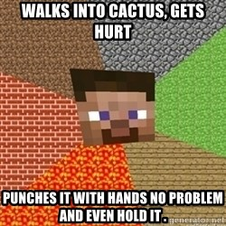 Minecraft Steve - walks into cactus, gets hurt PuNches it with hands no problem and even hold it .