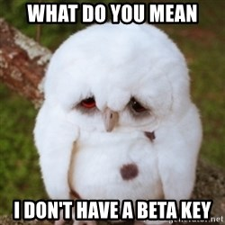 Sad Owl Baby - WHAT DO YOU MEAN i DON'T HAVE A BETA KEY