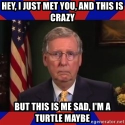 Sad Turtle Mitch - Hey, I Just Met You, And this is crazy but This is me sad, I'm a Turtle maybe
