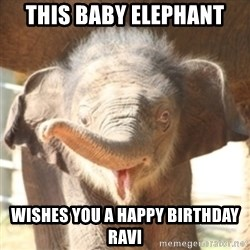 baby elephant - this baby elephant wishes you a happy birthday ravi