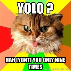 dangerous cat - yolo ? Hah (yont) you only nine times