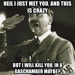 Hitler says nyan - Heil i just met you, and this is crazy but i will kill you, in a gaschamber maybe?