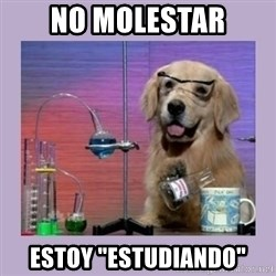 "Dog Scientist - no molestar estoy ""estudiando"""