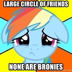 Depression Dash - lARGE CIRCLE OF FRIENDS NONE ARE BRONIES