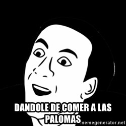 you don't say meme - DANDOLE DE COMER A LAS PALOMAS