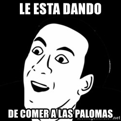 you don't say meme - le esta dando de comer a las palomas
