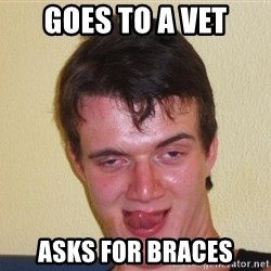 [10] guy meme - goes to a vet asks for braces